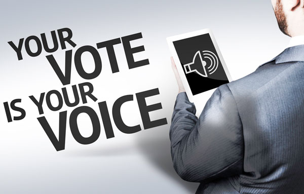 Your Vote is Your Voice banner image
