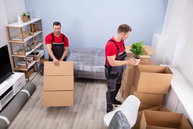 movers in Cambridge